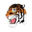 Ansonia Tigers